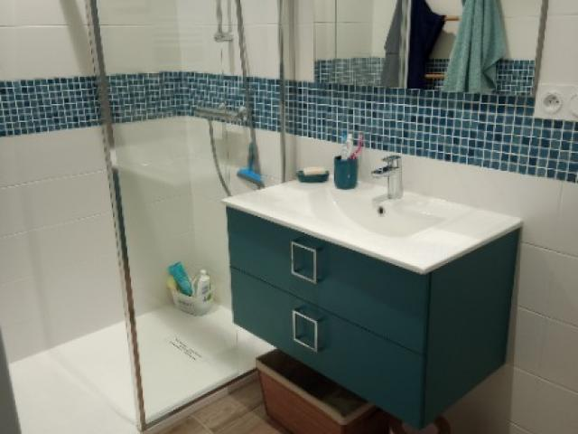 Rénovation et aménagement d'une salle de bains - Douche - Meuble Vasque